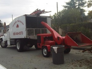 f700 and red chipper